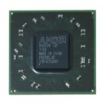 AMD Radeon IGP Chip 216-0752001